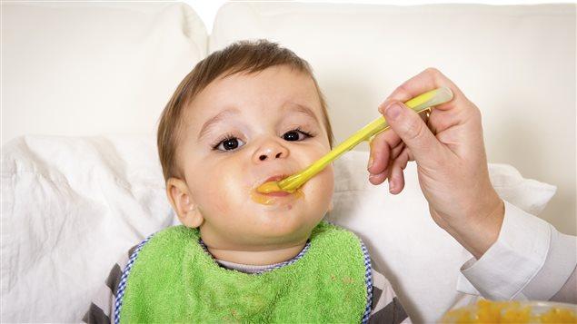 Un bébé mange sa purée.