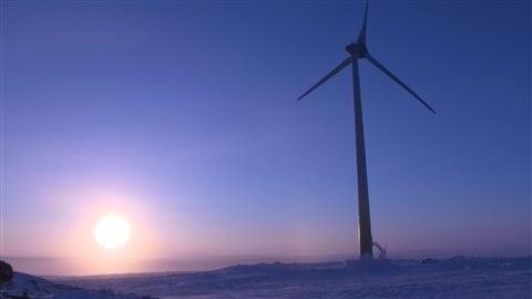 L'éolienne de Raglan