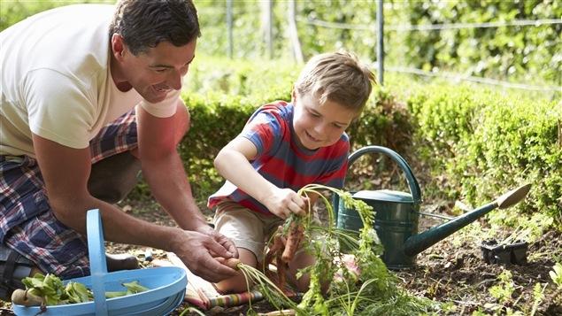 Un père et son fils jardinent.