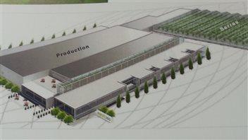 Le croquis de la future usine de Medicago