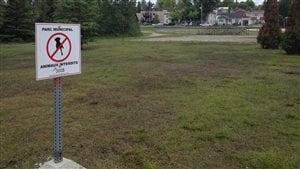 Il est interdit d'apporter son chien dans un parc municipal de Rouyn-Noranda, sous peine d'une amende de 300 $