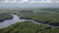 10 % des terres sauvages ont disparu en 20 ans