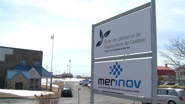 Le Centre d'innovation de l'aquaculture et des pêches Merinov