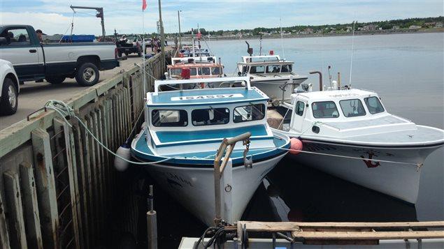 Bateaux de pêche au homard à Petit-Rocher