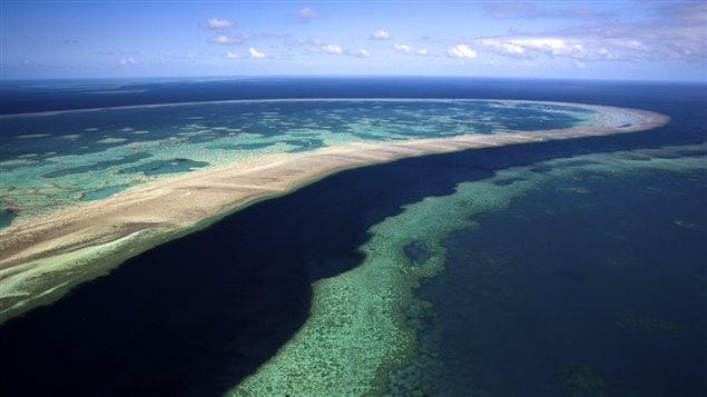 La Grande Barrière de corail s'étend sur 2000km le long de la côte du Queensland, en Australie.