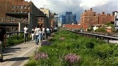 Les oeuvres d'art urbain à ne pas manquer à New York cet été