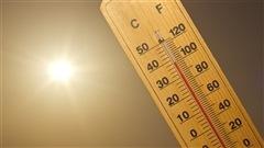 Des conseils pour faire face à la vague de chaleur