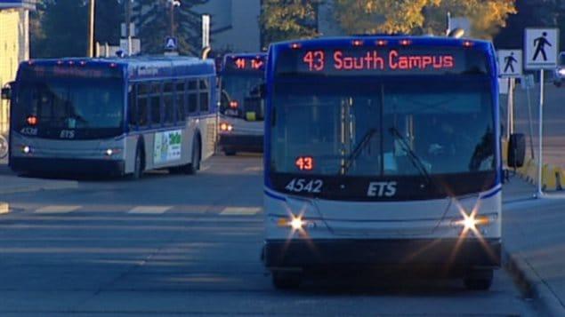 Des autobus de la Société des transports d'Edmonton..