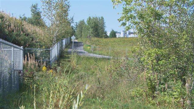La fin des travaux de réfection du sentier La Montagnarde à Magog a été soulignée.