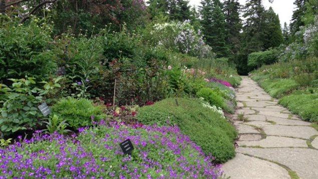 1000 arbres seront plant s aux jardins de m tis ici for Jardin de metis 2016