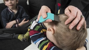 Une mère passe les cheveux de son enfant au peigne fin.
