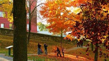 5 incontournables de l'automne