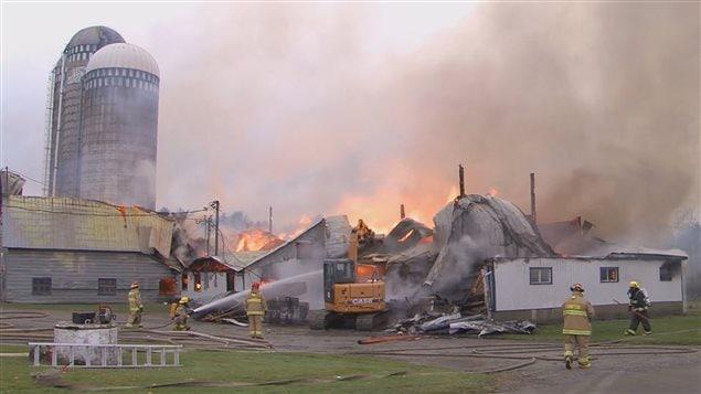 Une ferme laitière en flammes à Saint-Malachie.