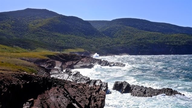 Le sentier Seawall longerait l'océan.