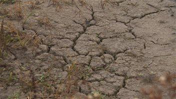 S'approvisionner en eau : un défi des changements climatiquesen Saskatchewan