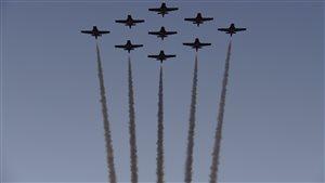 Un spectacle aérien s'est tenu dans les minutes précédent le défilé.