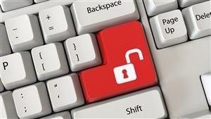 La gestion de la vie privée en ligne.