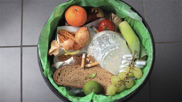 Gaspillage alimentaire : de la nourriture à la poubelle.