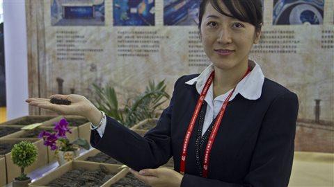 Les concombres de mer sont un des produits que les aquaculteurs de l'Atlantique tentent de vendre en Chine.
