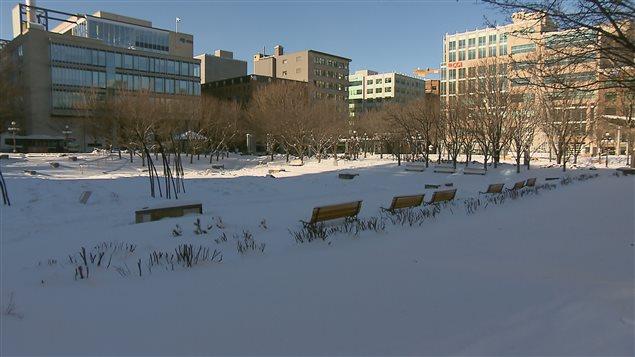 Le jardin de Saint-Roch, construit sur un ancien stationnement, a été inauguré en 1993.