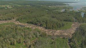 Embâcle de bois de plusieurs kilomètres sur la rivière Saint-Jean en Gaspésie.