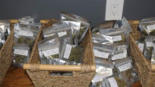De la marijuana perquisitionnée au Club compassion de la Saskatchewan