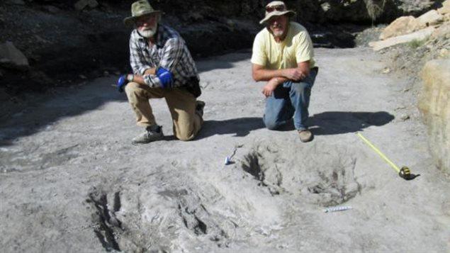 Les trous créés par les dinosaures