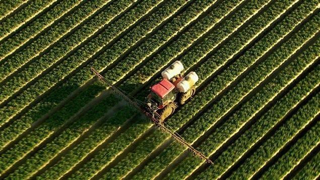 Prise aérienne d'un tracteur qui arrose un champ.