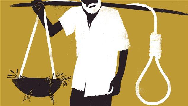 New York Times. Le sujet traite du taux effrayant de suicide chez les fermiers indiens.