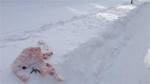 Des déchets jonchent les pistes de ski de fond.