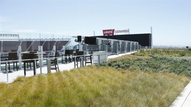 La terrasse gazonnée du domicile des 49ers.