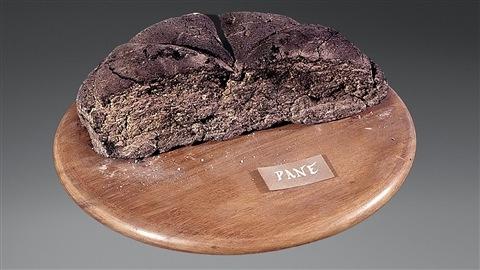 Moitié de pain carbonisé