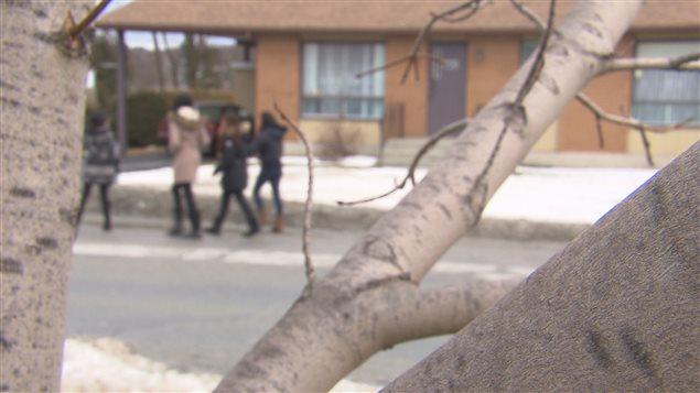Image floue de jeunes qui marchent à travers branches.