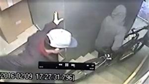 Un propriétaire met en ligne une vidéo de présumés voleurs.