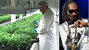 Snoop Dogg s'associe avec une usine de pot de Smiths Falls.