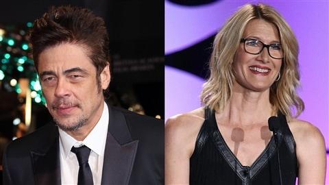 Benicio del Toro et Laura Dern