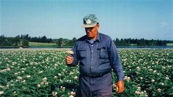 Johnny MacLean dans un de ses champs de pommes de terre de West Devon, à l'Î.-P.-É.