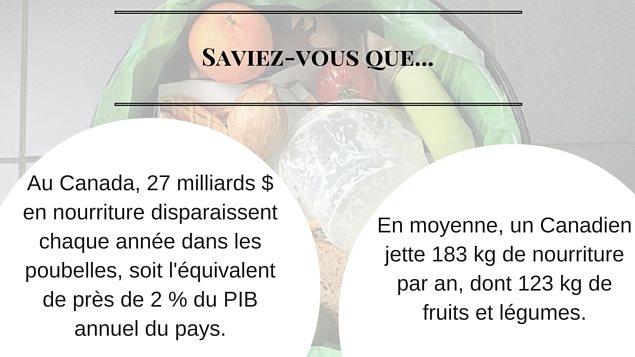 Au Canada, 27 milliards de dollars de nourriture disparaissent chaque année dans les poubelles