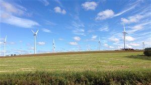 Un parc d'éoliennes à l'Île-du-Prince-Edouard