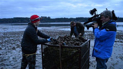Britanny Taylor inspecte la récolte d'huîtres du Pacifique. Elle représente la cinquième génération d'ostréiculteurs chez Taylor Shellfish.