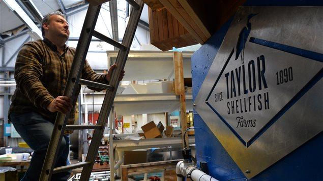 Benoit Eudeline, directeur scientifique de Taylor Shellfish, travaille sur un nouveau système de filtration pour améliorer la survie des huîtres dans son écloserie.