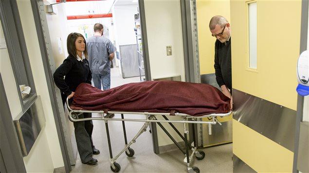 Un corps est apporté à l'Université Laval par des employés d'une résidence funéraire. Les cendres de la personne seront remises à sa famille après la période de recherche scientifique.