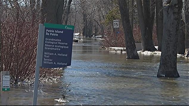 Certaines endroits de l'Île Pétrie sont inondés.