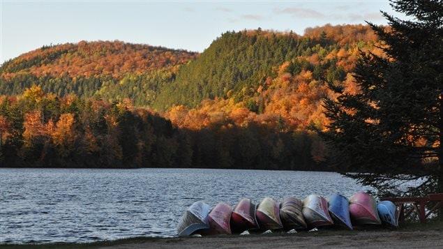 Quand l'été est passé, les arbres revêtent leur costume d'automne.