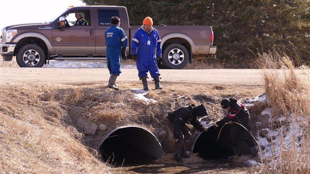Les recherches se poursuivent pour tenter de retrouver Chase Martens, 2 ans, disparu près d'Austin au Manitoba.