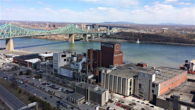 Les Molson et Montréal