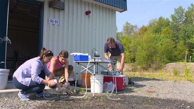 Des chercheurs prélèvent des échantillons d'eau.