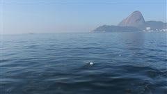 La pollution de la baie de Rio: «pas sérieux», dit un ancien champion olympique