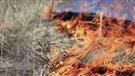 Le facteur humain, principale cause des feux printaniers (2015-05-09)