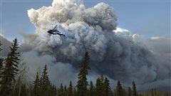 Le climat de plus en plus propice aux feux de forêt